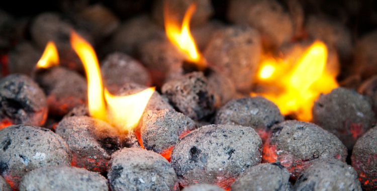 Barbecue BBQ Charcoal