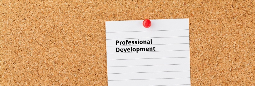 No School - Professional Development2